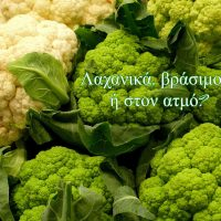 cabbage-3880944_1920(1)