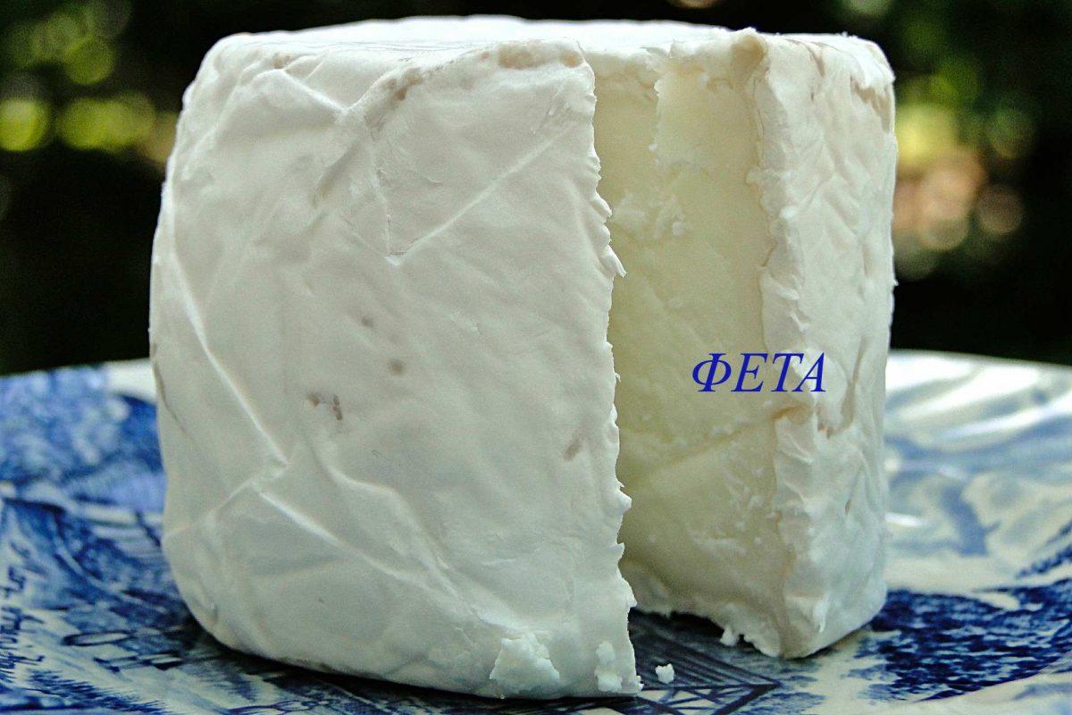 cheese-567367_1920(2)