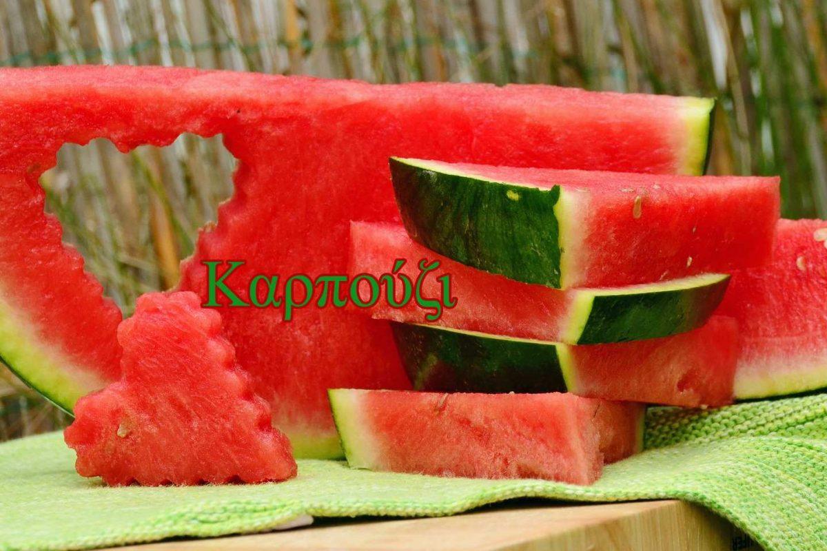 melon-1537284_1920(2)