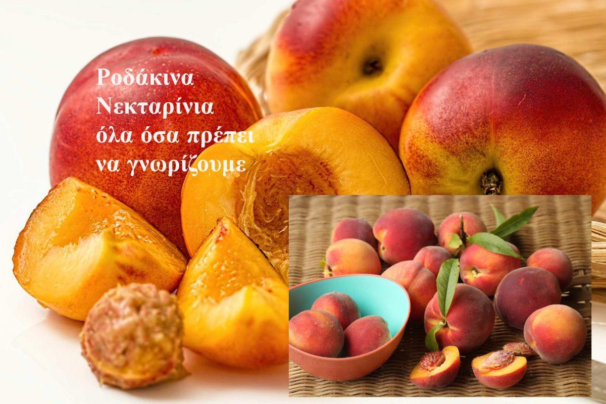 peach-1074997_1920(1)