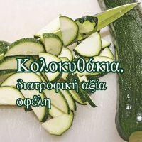 zucchini-3211970_1920(1)
